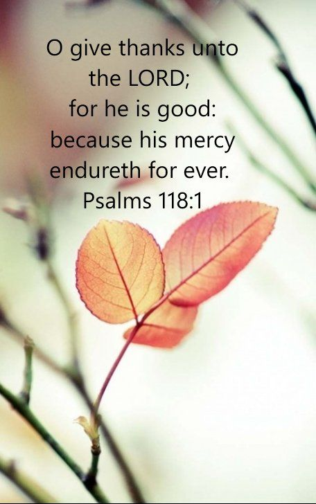 Oh, give thanks to the Lord, for He is good! For His mercy endures forever. [Psalms 118:1]