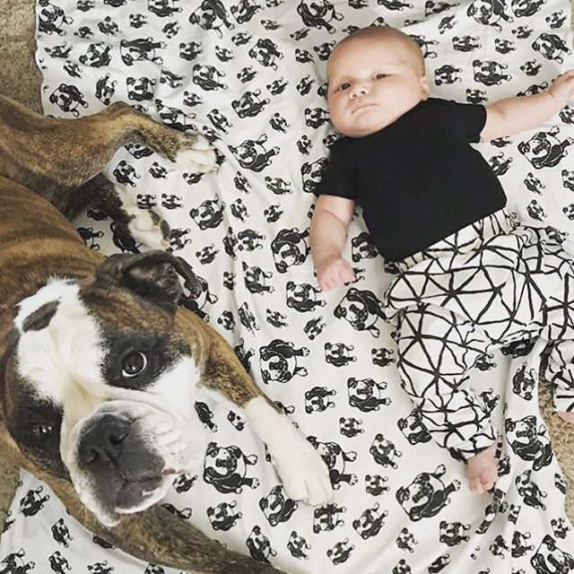 This duo is so adorable! Lil' bro Griffin and big sister Whiskee and our custom print organic cotton blanket with Whiskee print. Thanks to Mommy @melaniestmars for sharing this super cute photo!   #monofaces