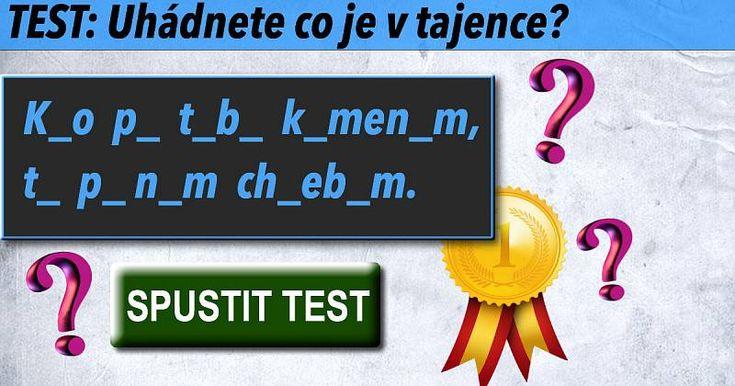 Výsledek kvízu: TEST: Uhádnete co je v tajence? -> Úspěch 100%