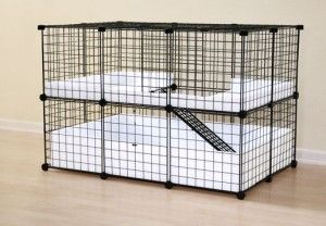"""The link has lots of useful information, but I pinned the picture because of the coroplast floor. I've been using it for a month and it has worked perfectly. """"All I need to know for my pet rabbit"""""""
