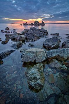 This is at Pipers Lagoon in Nanaimo, Vancouver Island, BC.
