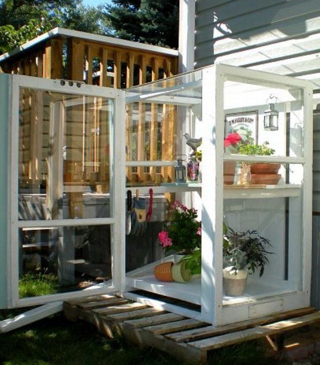 greenhouse of old windowsGreen Houses, Ideas, Windows Greenhouses, Minis Greenhouses, Old Windows, Gardens, Storms Windows, Mini Greenhouse, Small Greenhouse