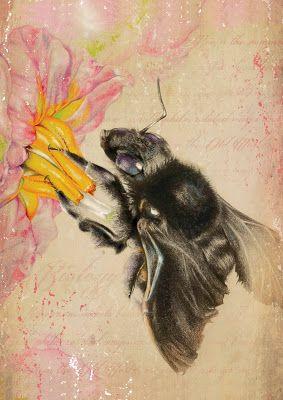 Fabiana dos Santos Patrício - Black Bee
