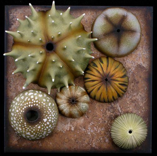 回  Tile o Phile  回   Andy Rogers, ceramic artist - Autumn Tide Pool