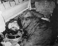 Assassination of NGO dinh dime