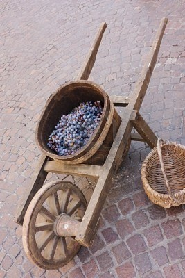 old wooden wheelbarrow with vat for grape transport, ancient tool for wine production