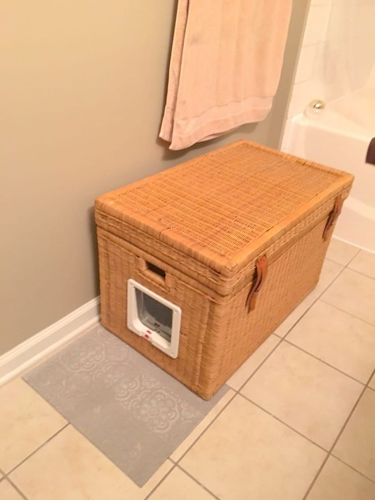 Where To Put Cat Litter Box In Small Apartment