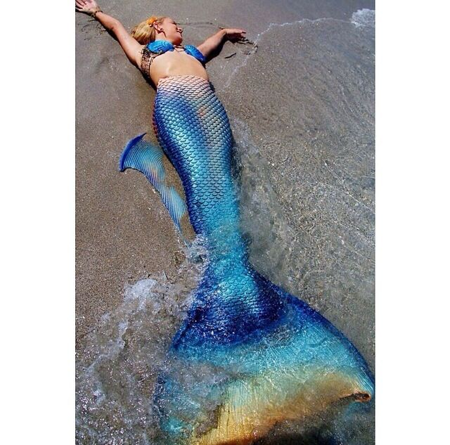 Real Mermaid Tail 186 best images about ...