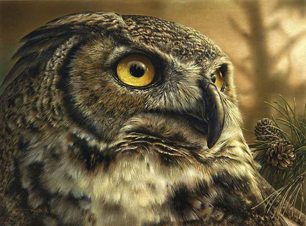 """Stunning Wildlife Paintings by Denis Mayer Jr.                                                            """"The Great Visionary"""".                                         Vancouver, Canada."""
