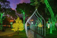 Bogotá Colombia - Christmas LED lighting During Blue Hour stock photo