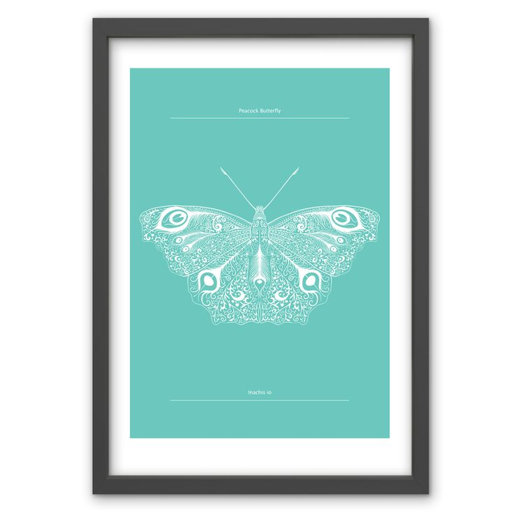 Peacock Butterfly in Spearmint - Hand pulled screen print. 50cm x 70cm / 19.6 inches x 27.5 inches. 100% recycled archival quality paper. Printed using water based archival quality eco inks. £40 www.toddjarvis.co