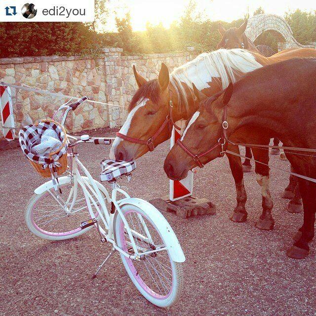 Buenos días  A ver que tenemos aquí  a los animales también encantan nuestras bicis  Bicicleta COCO con llantas en color rosa  de la casa #embassy disponible en nuestra tienda online www.favoritebike.com Repost @edi2you ・・・   #primavera #activity #befit #bicicleta #bicycle #ride #little #trip #horse #like #interest #favoritebike #roweryembassy #animales #mibici #biciclasica #urbanstyle #bicicletaurbana #encanta #buenosdías #españa #travel #loveit #instamood #picofthed