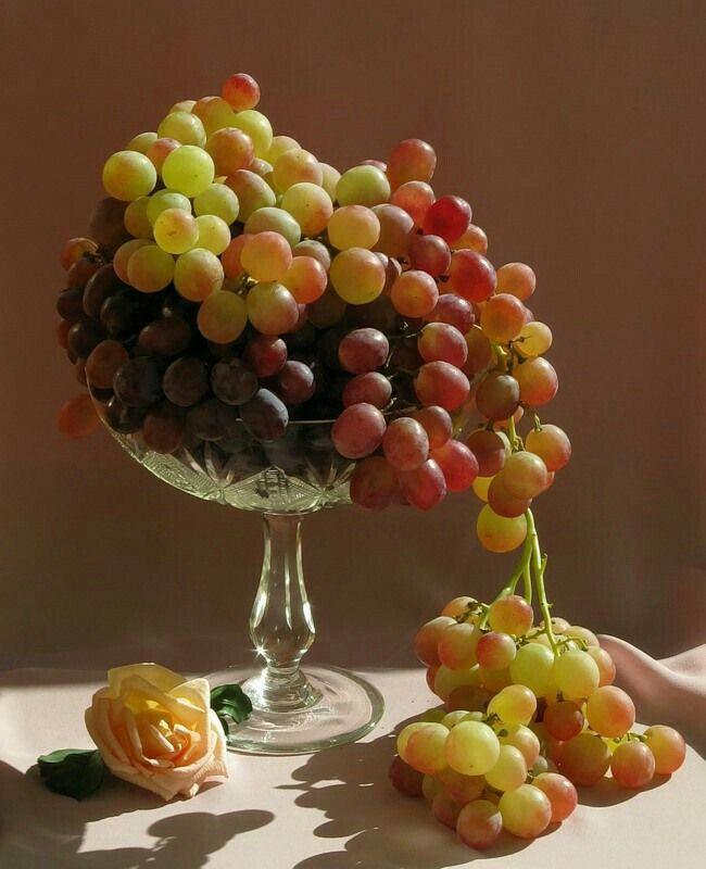Красивые картинки фрукты в вазе