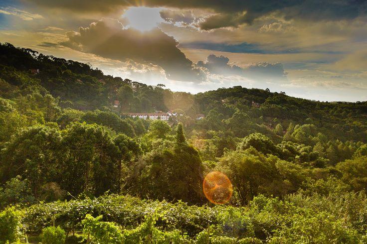 MFMarcelo posted a photo:  Monte Verde, Minas Gerais, Brasil