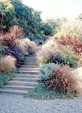California Native Garden. Lots of big bushes together = drama!