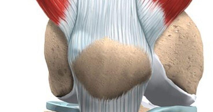 Recuperando-se de uma cirurgia de reparação do menisco lateral do joelho. Recuperar-de se qualquer cirurgia feita no joelho é um processo delicado. Os movimentos do joelho, uma das articulações mais complexas do corpo, desempenham um papel essencial em muitas atividades do dia-a-dia. A maioria das pessoas raramente pensa sobre esses movimentos até o momento em que não conseguem fazê-los. A recuperação de um reparo ...