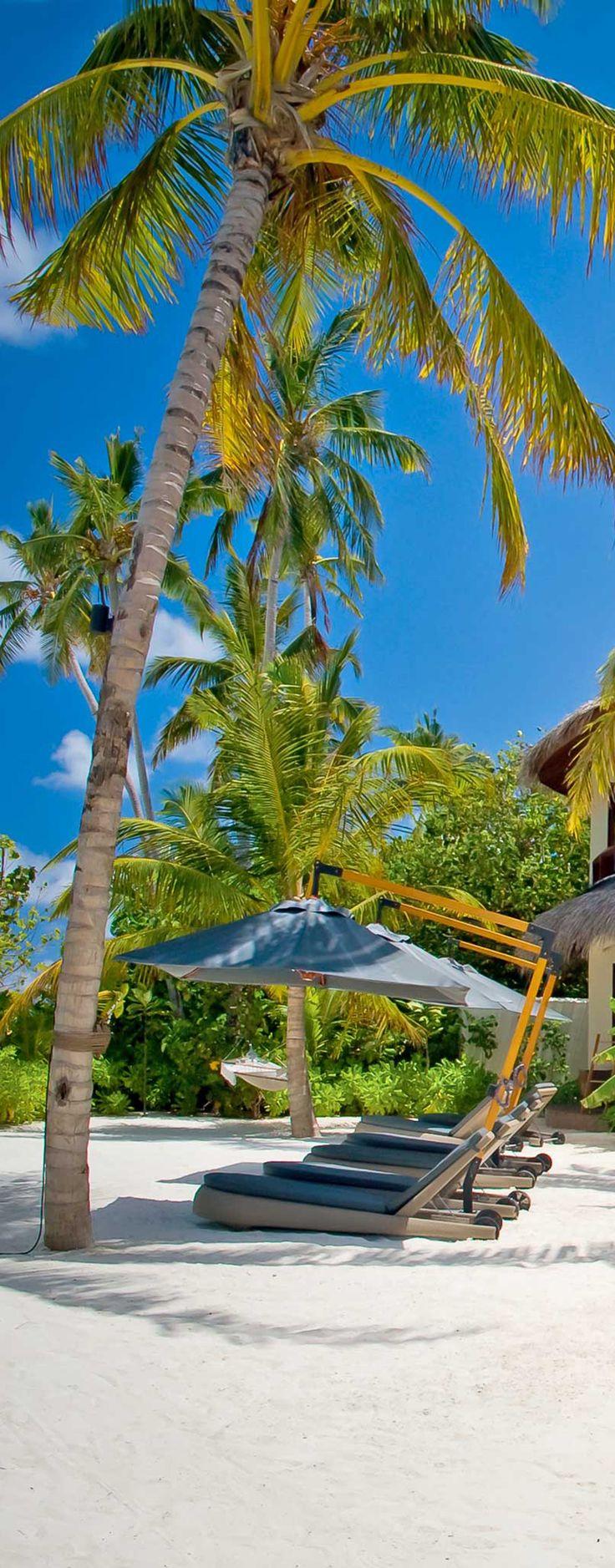 Take me to the Maldives!