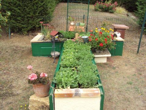 les 25 meilleures id es concernant jardin sur lev sur pinterest bo tes pousser bo te de. Black Bedroom Furniture Sets. Home Design Ideas