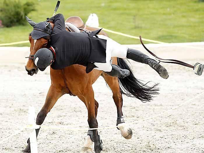 Девятилетием дочери, смешные картинки верховая езда
