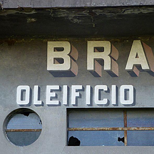Oleificio Distilleria Brasini