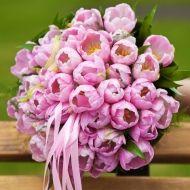 Tulip Grace Bridal Bouquet - Tulip Grace Bridal Bouquet > View Full-Size Ima...   Grace, Bouquet, Tulip, Purchased, Aud   Bunch