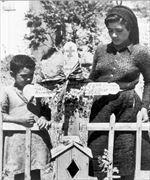 Μετά τη σφαγή στο Δίστομο-Οι ομαδικοί τάφοι δύο οικογενειών που ξεκληρίστηκαν,του Γιάννη Λ.Παπαϊωάννου και Γιάννη Ν.Παπαϊωάννου.Η γειτόνισσα Γιαννούλα Ανέστη-Μάριου θρηνεί.