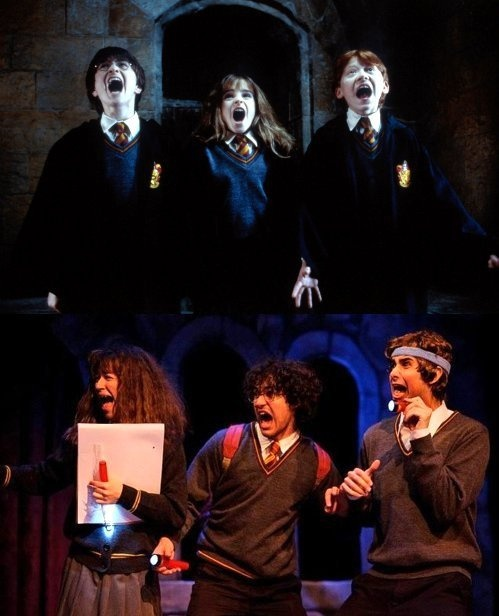 Harry Potter and A Very Potter Musical