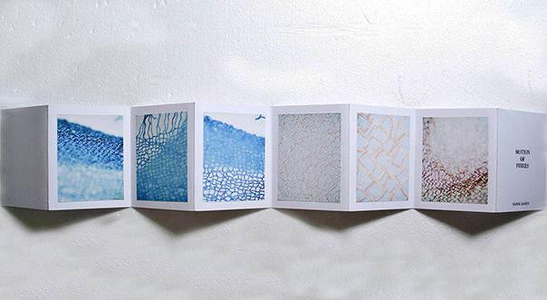 concertina book with photographs taken from a microscope