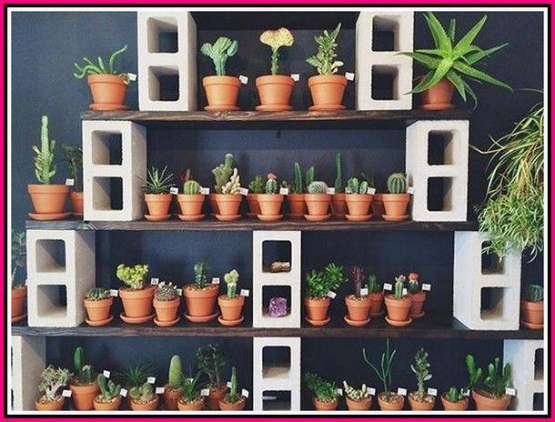 Horticulture Tips For The Best Bountiful Harvest – Indoor Garden Ideas