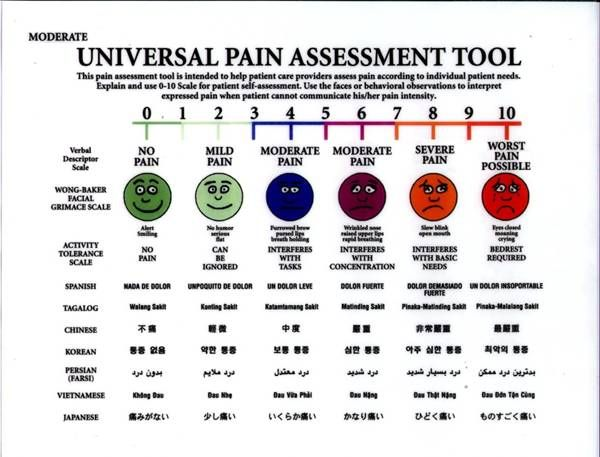colored visual analogue scale pain - in 8 languages