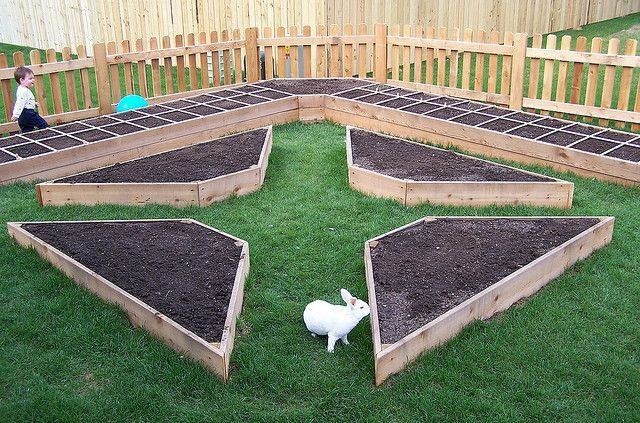 raised beds for a traditional potager garden: