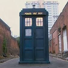 I want a TARDIS because it has a library, a pool IN the library, bedrooms, and the ability to time travel. It is also bigger on the inside.