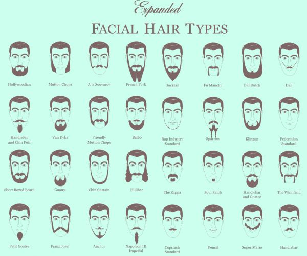 beard infographic infographic pinterest beards infographic and facial hair. Black Bedroom Furniture Sets. Home Design Ideas