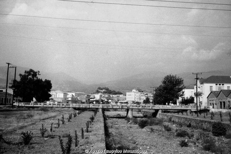 Ο Νέδοντας την άνοιξη του 1966 Διαβάστε το άρθρο στην ΕΛΕΥΘΕΡΙΑ http://www.eleftheriaonline.gr/polymesa/nature/item/46545-nedontas-1966