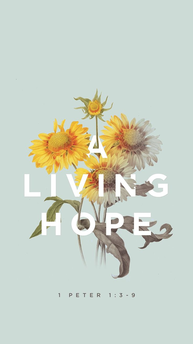 A living hope // mobile bible verse wallpaper by Godsfingerprints.co