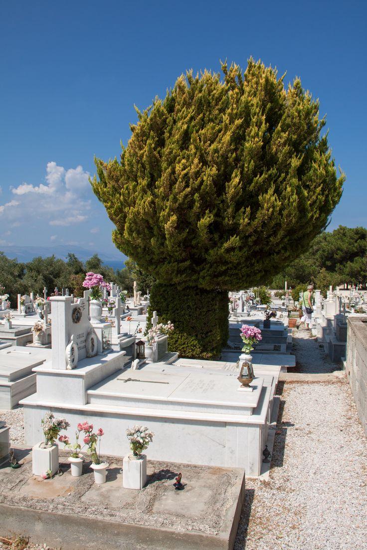 Begraafplaats bij Platanias Kreta