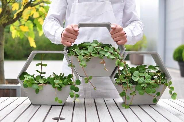 HIVE  Jest projektem do zastosowania w małych pomieszczeniach. Pionowe, sześciokątne donice można układać w zieloną ściankę, po prostu je ze sobą skręcając. HIVE doskonale prezentują się także pojedynczo – światło bez problemów dociera do środka donicy, dzięki czemu rośliny są idealnie nasłonecznione.  http://zielonekaskady.pl/?page_id=205