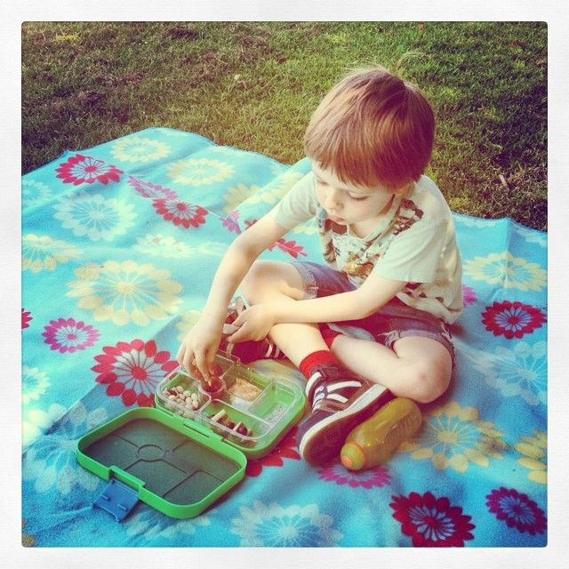 @houseofyorkchildcare Picnicking in the park. #picnic #park #yumbox #bento #rockpark #barnstaple #childminding #houseofyorkchildcare