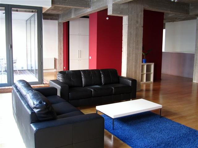 beautiful and spacious two bedrooms apartment located in the center of the Brussels.