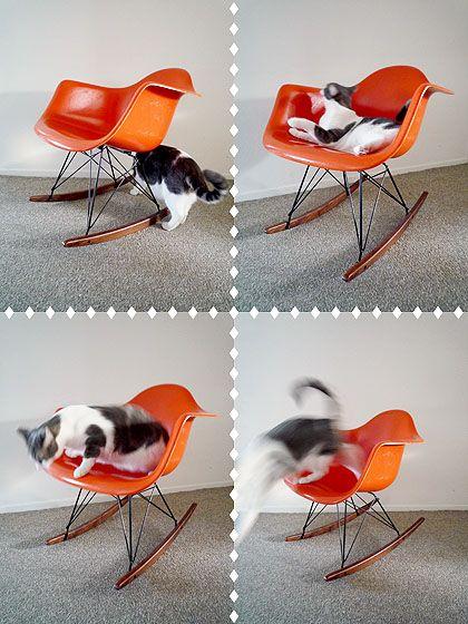 Eames shell rocking chair