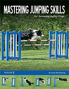 Which Are The Best Books For Dog Agility Handling Skills