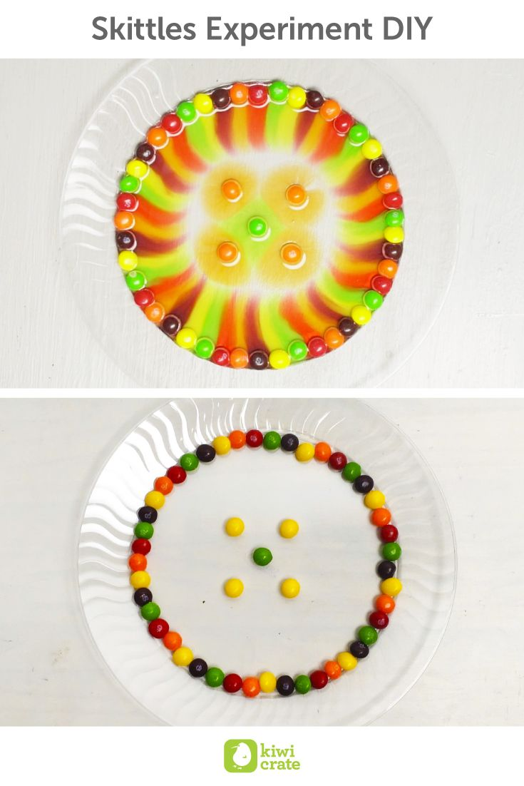 Skittles Experiment DIY! Can't get yourself to throw away candy stored in your kitchen cabinets or find reasons to keep your kids away from too many sweets? Try this experiment with your little ones - sometimes playing with food is inevitable, but with sweet science comes knowledge!