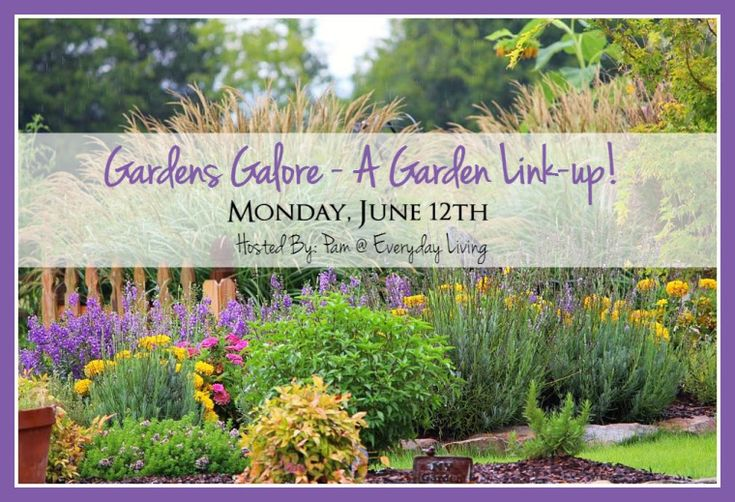 Around the Potting Shed: Wheelbarrow Makeover – Home is Where the Boat Is
