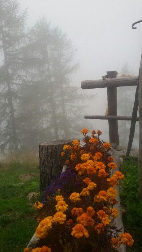 Il fascino della nebbia