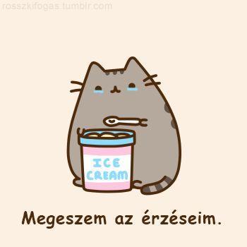 Pusheen magyarul