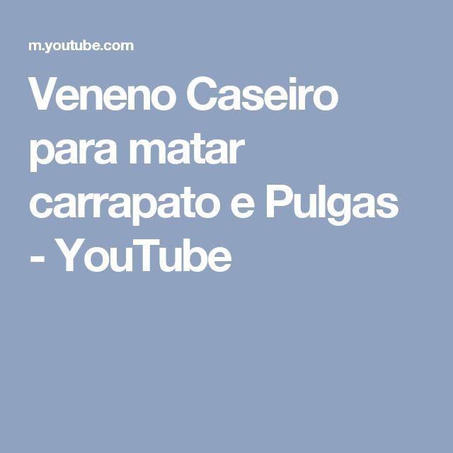 Veneno Caseiro para matar carrapato e Pulgas - YouTube