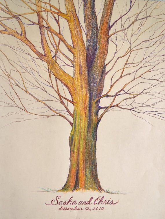 Drawing art lesson ideas trees pinterest for Beautiful drawings of trees