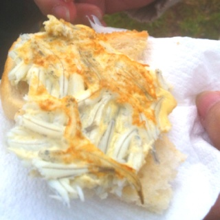 Never knew white bait patties could taste so good. And oh-so-big! At Curly Tree Whitebait, Waita River, Haast, New Zealand. And this wasn't even white bait season, which runs from Sept-Nov.