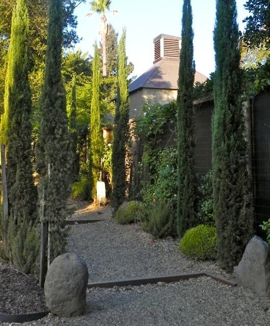 Tuscan House Style With Front Walkway And Italian Cypress: 323 Best Images About Landscaped On Pinterest