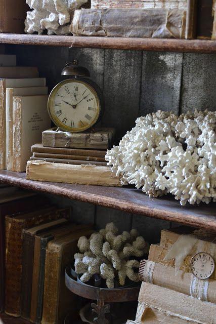 Inspiration for Coastal Living; Tuck a few beach treasures into the shelves of a bookcase.